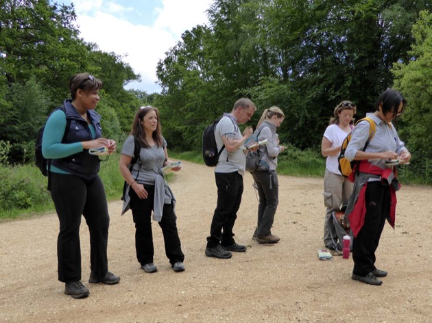 corporate group learning to reads maps on a team day out in new forest