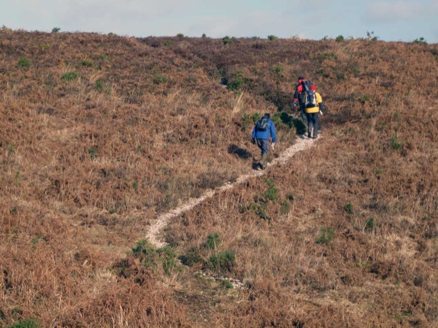 outdoor skills group walk up a steep new forest path
